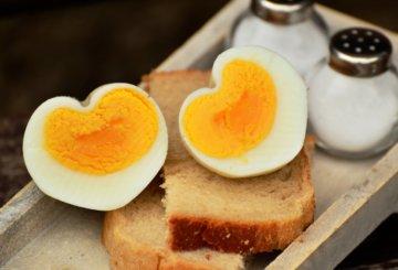 Alimentation du coeur